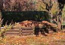 Solutions et astuces au-delà du compost