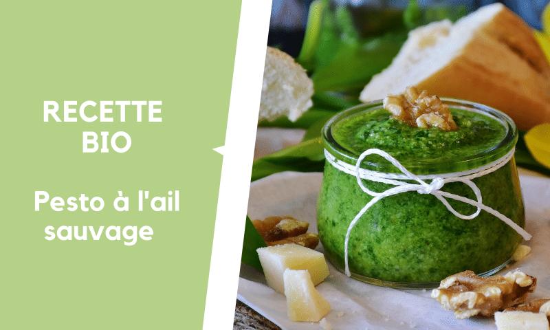 Recette: Pesto à l'ail sauvage Bio frais et cru