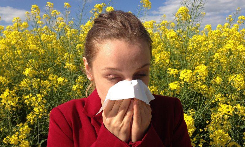 Comment traiter les allergies naturellement ?
