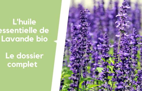Huile essentielle de lavande bio : le couteau suisse de l'aromathérapie !
