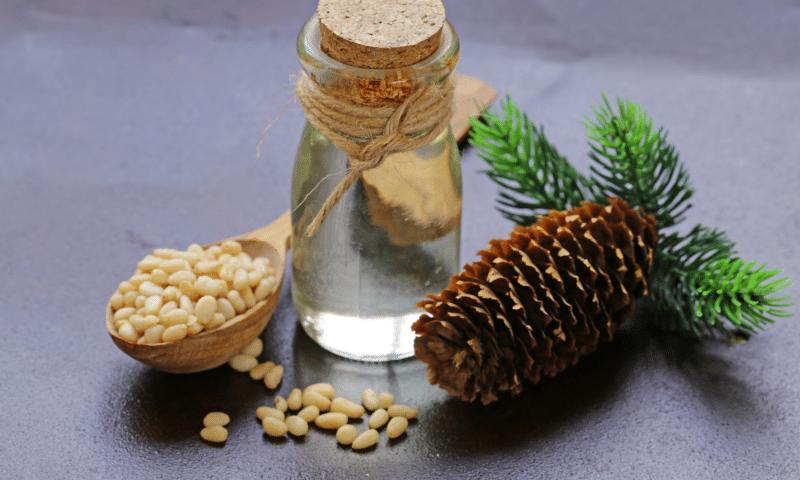 Comment choisir son huile végétale bio ?